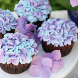 chocolate cupcakes with colored frosting
