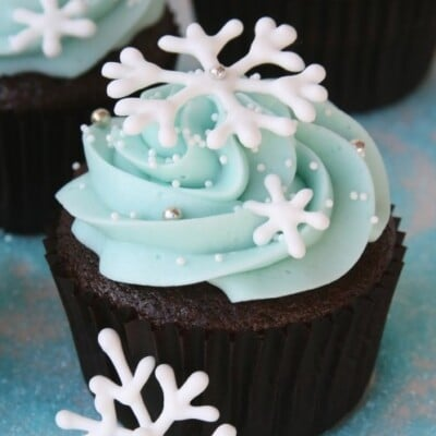 chocolate cupcakes with royal blue icing
