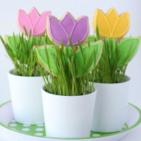 Tulip Cookies
