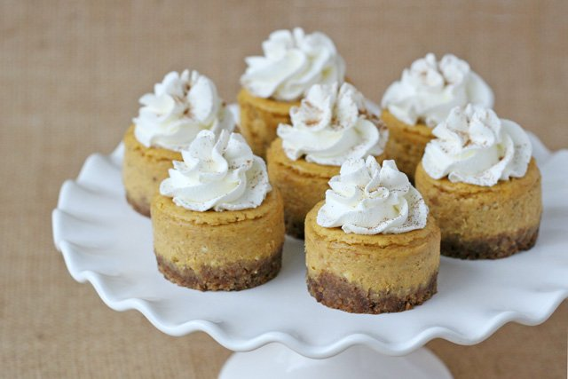 ... mini pumpkin cheesecakes 5 mini pumpkin cheesecakes mini pumpkin