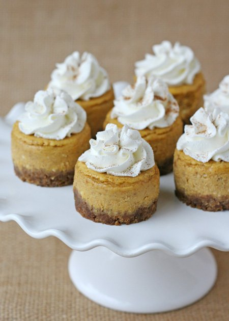 ... mini pumpkin mini pumpkin cheesecakes mini pumpkin cheesecakes