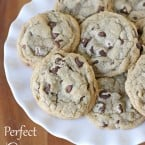 Perfect Chewy Chocolate Chip Cookie Recipe - glorioustreats.com