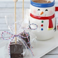 Hot Cocoa on a Stick - Such a perfect little gift idea!! From Glorious Treats
