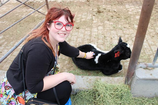Real California Milk Farm Tour