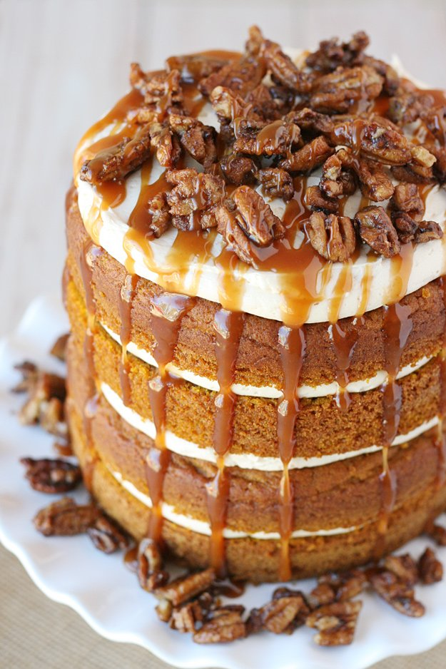Simply the PERFECT cake for fall! Moist and flavorful Pumpkin Cake is paired with Salted Caramel Frosting, Candied Pecans and even more amazing salted caramel!