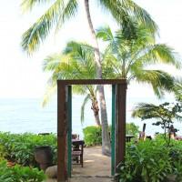 Paradise found in Puerto Vallarta Mexico
