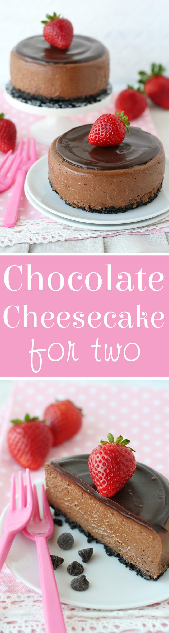 So rich and creamy! CHOCOLATE CHEESECAKE for two!